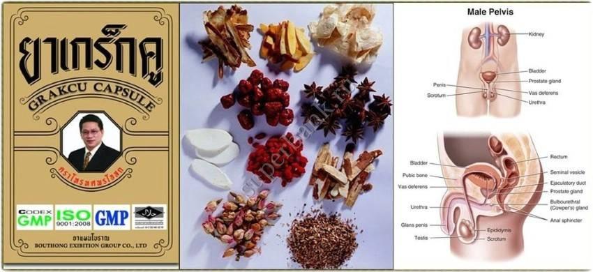 """Natural herbal viagra for men """"Grakcu"""""""